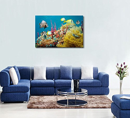Colored Underwater Marine Life in a Coral Reef with Tropical Fish Caribbean Sea Wall Decor