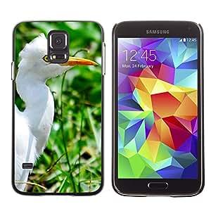 Cas Coq Case Cover // M00147067 Grulla Blanca Garza Pico Amarillo Pico // Samsung Galaxy S5 S V SV i9600 (Not Fits S5 ACTIVE)