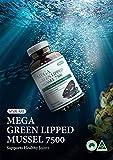 Sini Care Mega Green Lipped Mussel 7500