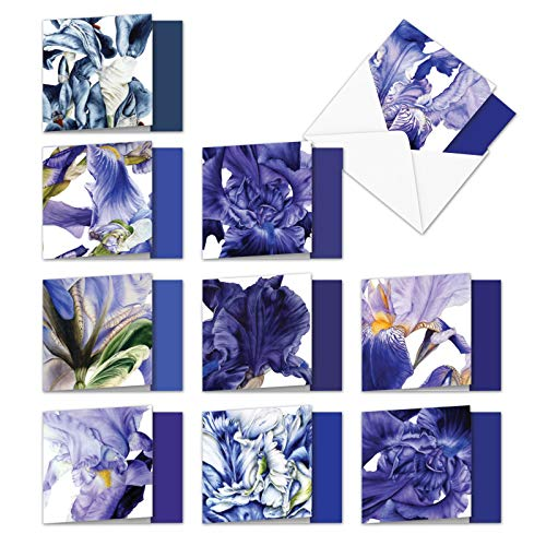 Iridescent Iris - Box of 10 Flower Greeting Cards with Envelopes (4 x 5.12 Inch) - Bulk Blank Floral All-Occasion Note Cards - Assorted All Occasion Printed Notecard Set MQ4949OCB-B1x10