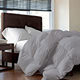 Tot America 100% HYPOALLERGENIC Genuine Luxurious Egyptian Cotton HEAVEN LIKE FEEL COZY & SNUGLY 400 GSM Comforter King/Cal-King, Silver Grey