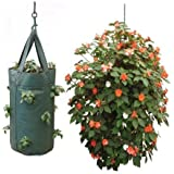 Nutley's Hanging Tomato Growbag Planter - Dark Green