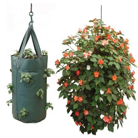 - Nutley's Hanging Tomato Growbag Planter - Dark Green