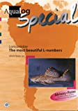 Aqualog Special - Loricaridae The Most Beautiful L-numbers