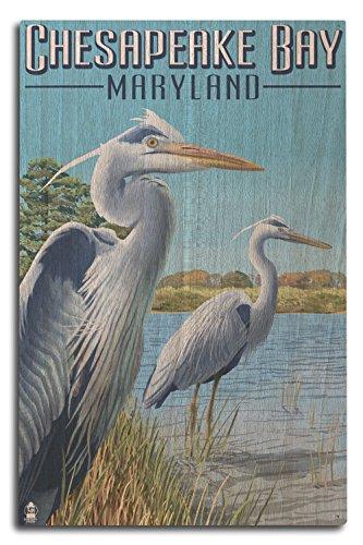 Heron Bay Wall - Lantern Press Chesapeake Bay, Maryland - Blue Heron (10x15 Wood Wall Sign, Wall Decor Ready to Hang)