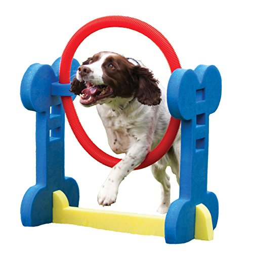 Agility Hoop - Dog play & exercise toy (Dog Used Agility Equipment)