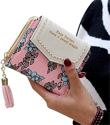 Ladies Clutch Wallet,Hemlock Women Pocket Wallet Credit Card Purse MIni Handbag (Pink)