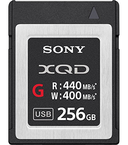 Sony Professional XQD G-Series 256GB Memory Card (Discontinued)