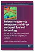 Polymer Electrolyte Membrane and Direct Methanol Fuel Cell Technology: Volume 2: In Situ Characterization Techniques for Low Temperature Fuel Cells (Woodhead Publishing Series in Energy)