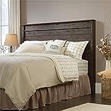 Sauder 419887 Headboard Bed Room Full/Queen Deal (Small Image)