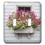 3dRose Roni Chastain Photography - Pink fowers by the window - Light Switch Covers - double toggle switch (lsp_295334_2)