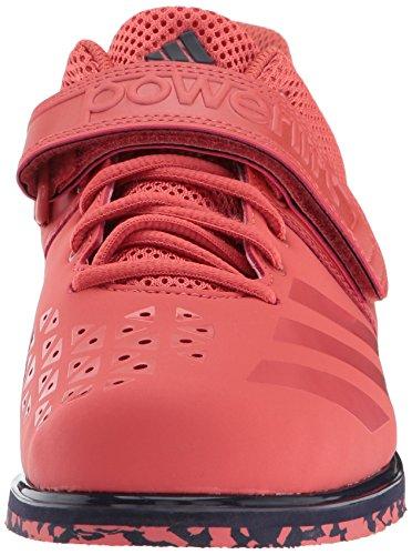 adidas Performance Herren Powerlift.3.1 Spur Scarlet / Spur Scarlet / Noble Tinte