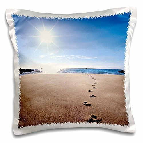 3dRose Footprints in Sand, ABEL Tasman National Park-AU01 Dwa2064-David Wall-Pillow Case, 16 by 16
