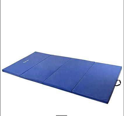 Amazon.com: Wly & Home suave alfombra de piso esterilla de ...