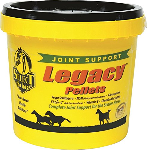 RICHDEL 784299542006 Legacy Pellets Joint Support for Senior Horses, 20 lb by RICHDEL
