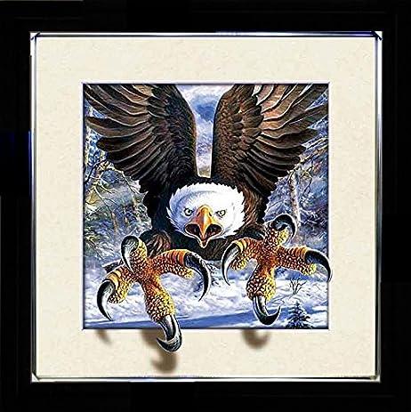 Amazon.com - 5D / 3D + Lenticular Framed 3d Picture Poster Artwork ...