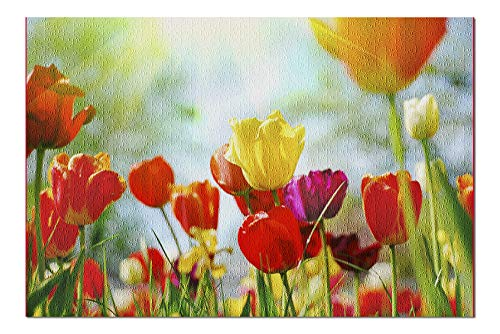 Bright Tulips In Sunlight Photography A-91861 (20x30 Premium 1000 Piece Jigsaw Puzzle, Made in USA!) - Tulip Bouquet Light 20