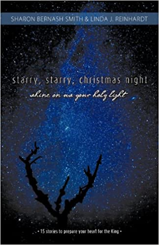starry starry christmas night shine on us your holy light 15 stories to prepare your heart for the king sharon bernash smith linda j reinhardt - Starry Christmas