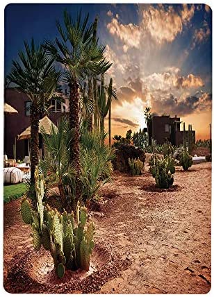 壁紙 絵画風ポスター 砂漠、雄大な空のヤシの木とオアシスモロッコトロピカルな自然のサボテン、ブルーグリーンライトブラウン60x100cm 景色- 森林と小道 森林浴 新緑 散歩道 目の保養 癒し 気分転換 建築用壁紙+耐候性塗料