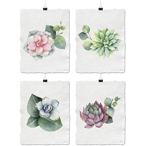 - Texture of Dreams Watercolor Botanical Print Wall Art, Vintage Botanical 100% Cotton Watercolor Rag Paper, Giclee Printing Poster Home Decor (Watercolor Succulent Flowers (Set of 4), 9
