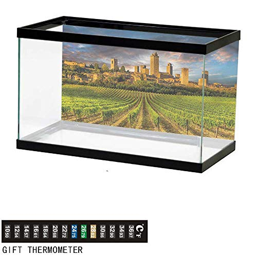 bybyhome Fish Tank Backdrop Italy,San Gimignano Vineyards,Aquarium Background,48