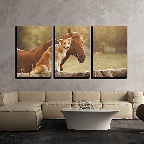 Red Border Collie - wall26 - 3 Piece Canvas Wall Art - Red Border Collie Dog and Horse Together at Sunset in Summer - Modern Home Decor Stretched and Framed Ready to Hang - 24