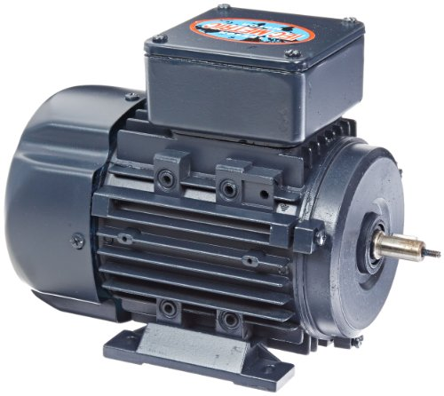 - Leeson 192011.00 Rigid Base IEC Metric Motor, 3 Phase, D63 Frame, B3 Mounting, 0.25HP, 1800 RPM, 230/460V Voltage, 60/50Hz Fequency