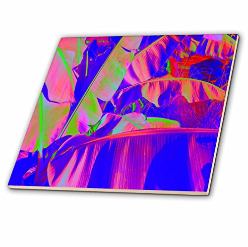 Banana Leaf Porcelain - 3dRose Print of Banana Leaves in Neon Colors - Ceramic Tile, 4-Inch (ct_204565_1)