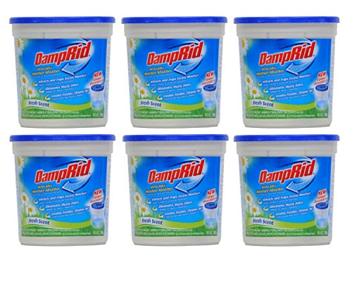 Using DampRid to Prevent Mold DampRid is a product designed to remove moisture from the air, which helps prevent excessive humidity as well as mold and mildew. It consists of a non-toxic inorganic mineral salt called calcium chloride that naturally absorbs moisture from the air.
