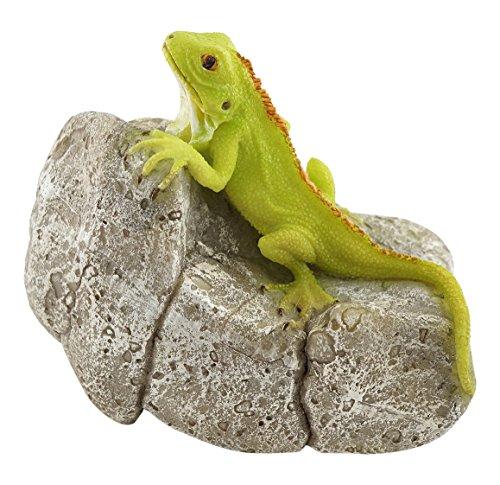 (Top Collection Miniature Fairy Garden and Terrarium Iguana on Rock Statue )