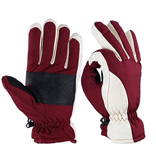 Ski Gloves, OZERO -20ºF Cold Proof Winter Thermal Skiing Glove for Men & Women - Reinforced PU Palm and TR Cotton Insert - Water Resistant & Windproof - Wine-Cream