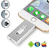iPhone USB Flash Drive, iPad Memory Stick, iOS External Storage Memory Stick Thumb Drive Expansion for iOS Android PC Laptops (256GB, Silver)