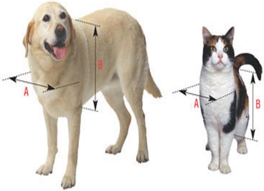 Ideal Pet Products RuffWeather Replacement Flap Extra Large : Ruffweather Pet Door : Pet Supplies