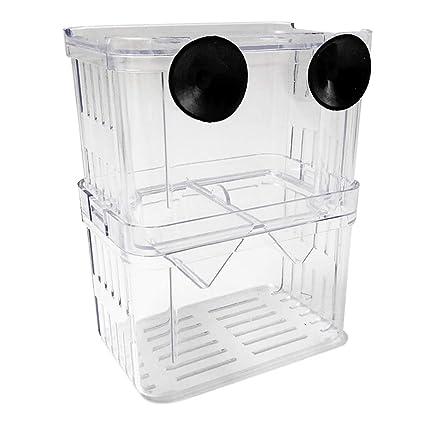Kalaokei - Caja Protectora de plástico para Acuario con Aislamiento de cría de Peces
