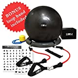 HOM Premium Exercise Ball With Resistance Bands and Base All-in-one Home Gym-Balance Ball, Stability Base, Resistance Bands, Foot Pump, Exercise Chart, Bonus Band-For Back Pain/Yoga/Rehab/Home/Office