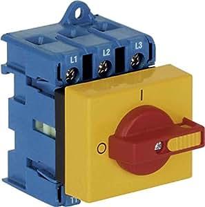 Kraus & Naimer Interruptor principal kg32a T203/D de a044ve2Last Interruptor 9004257064687