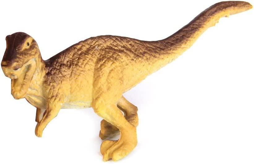TOYMYTOY Pack of 12 PVC Assorted Model Dinosaur Figure Toys fro Kids