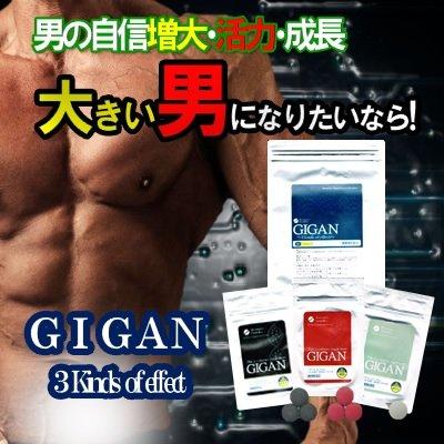 GIGAN 3 kins of ecfect ギガン B01JYR6BJI 1袋+1袋プレゼント B01JYR6BJI, ソフマップ デジタルコレクション:ca781197 --- dakuwebsite.xyz