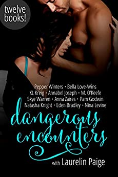 Dangerous Encounters: Twelve Book Boxed Set by [Paige, Laurelin, Winters, Pepper, Warren, Skye, Knight, Natasha, Zaires, Anna, Kreig, KL, Joseph, Annabel, Love-Wins, Bella, Levine, Nina, Bradley, Eden]