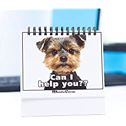Funny Office Gift – Doggy Moodycards! Great Cubicle Accessories - Make Everyone Laugh with These Lovable Pets –Hilarious Dog Pictures Tells Everyone How You Feel - Fun, Amusing, Useful & Adorable