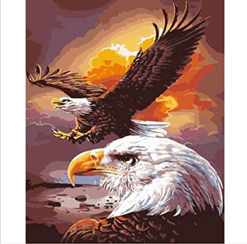qiyan DIY Animal Eagle Paint por Kit Acrílico Pintura al óleo sobre Lienzo, 40x50cm