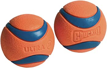 2-Pack Chuckit 2.5 Inch Ultra Ball