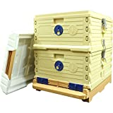 Apimaye Langstroth size Insulated Bee Hive Set [No Frames included] (White Top)