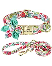 Beirui Custom Flower Girl Dog Collar and Leash Set for Female Dogs- Floral Pattern Engraved Pet Collars with Personalized Gold Buckle