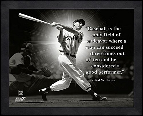 Bowl 16x20 Photo Pro (Ted Williams Boston Red Sox framed Pro Quotes 16x20)