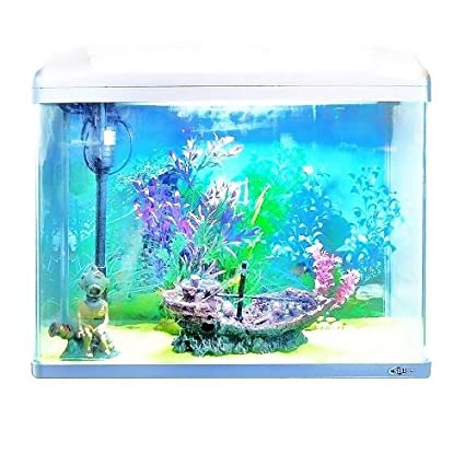 Aquarline Seastar Acuario Kit completo con iluminación y sistema de filtro, 48 litros, color