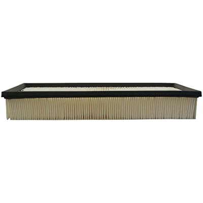 Luber-finer AF3933 Heavy Duty Air Filter: Automotive