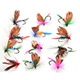 Bluenet 12pcs Fly Fishing Flies Set Butterfly Like Trout/bass Floating Fishing Lure