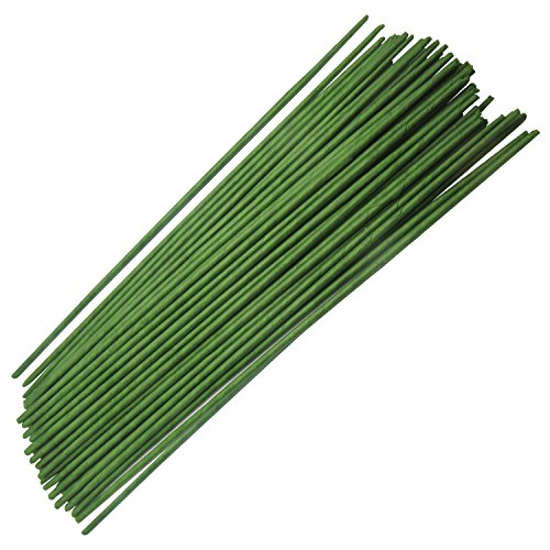 Homework2 Green Floral Stem Wire 18 Gauge Wire 12 Inch, Pack of 50 (Flower 12 Floral)