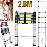 Autofather 2.6M 8.5FT Telescopic Multi Purpose Ladder 9 Steps Climb Extension Home Loft Portable Light Weight DIY Ladder, UK Stock